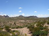 Big Bend National Park Desert