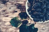 Ripe Black Mulberry On Wooden Board. Summer Berries. Berry Background. Tree And Berries poster