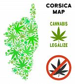 Royalty Free Cannabis Corsica France Island Map Collage Of Weed Leaves. Concept For Narcotic Addicti poster