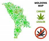 Royalty Free Cannabis Moldova Map Collage Of Weed Leaves. Template For Narcotic Addiction Campaign A poster