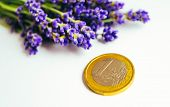 A Bunch Of Lavender Flowers And A Euro Coin. Lavender Oil And Perfume Consumption And Business Conce poster