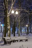Winter, Night In A Winter City, Winter City, Winter In A Park, Snow, Frost, Cold, Snowstorm, Snowy P poster