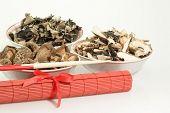 Mushroom Sorts