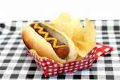 Hot Dog. Hot Dog in bun and potato chips with mustard squiggle on a black and white checker serving  poster