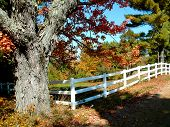 stock photo of split rail fence  - fall - JPG