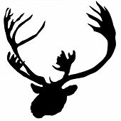 foto of caribou  - A vector illustration of animal series - JPG