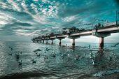 Waterscape in Miedzyzdroje