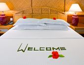 Word Welcome And Flowers On Bed poster