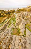 Tide Pools And Jagged Rocks On The Coast