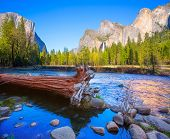 stock photo of granite dome  - Yosemite Merced River el Capitan and Half Dome in California National Parks US - JPG