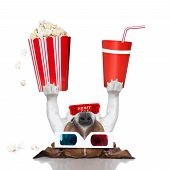 stock photo of jack-in-the-box  - movie dog up side down holding popcorn and cola - JPG