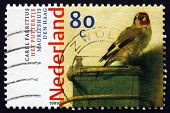 Postage Stamp Netherlands 1999 Goldfinch, By Carel Fabritius