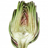 Half fresh artichoke isolated on a white background