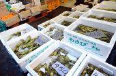 Tokyo, Japan- Nov 26, 2013: Tsukiji Market Is A Large Market