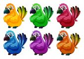 picture of angry bird  - Illustration of a group of angry birds on a white background - JPG