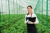 picture of greenhouse  - Portrait of a young woman at work in greenhouse - JPG
