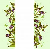 Background With Bellflower And Leaves