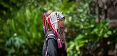 CHIANG RAI, THAILAND - DEC 4, 2013: Unidentified Akha hill tribe female in traditional clothes. Tour