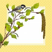 Vintage background with birch branches and tit