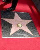 LOS ANGELES - MAY 9:  Rick Springfield's Star at the Rick Springfield Hollywood Walk of Fame Star Ceremony at Hollywood Blvd on May 9, 2014 in Los Angeles, CA
