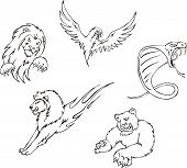 Tattoos - Predator Animals