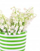 Beautiful lilies of the valley in cup, isolated on white