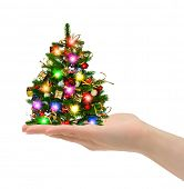 Christmas tree in hand isolated on white background