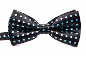 Elegant Black Bow Tie In Blue Polka Dots On An Isolated White Background