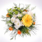 picture of gerbera daisy  - Bright bouquet - JPG