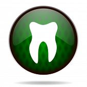 tooth green internet icon
