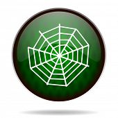 spider web green internet icon