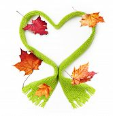 Green wool knitted scarf heart shape and autumn maple leaves on white background.