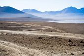 In the Altiplano, South Bolivia