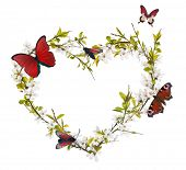 heart shape from cherry tree flowers and red butterflies isolated on white background