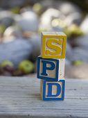 Sensory Processing Disorder (SPD)