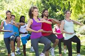 stock photo of tai-chi  - Fitness group doing tai chi in park on a sunny day - JPG