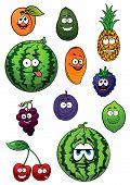 picture of blackberries  - Cartoon fresh watermelon - JPG
