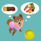 stock photo of salmon steak  - Pomeranian dog with empty bowl want to eat meat and salmon steak - JPG