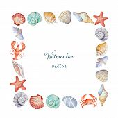 pic of scallop shell  - Watercolor square frame of sea shells vector illustration - JPG