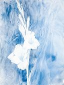 stock photo of gladiolus  - watercolor painting of gladiolus in blue color scheme - JPG