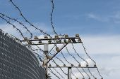picture of barbed wire fence  - High Security Fence with electric barbed wire against a blue sky with clouds copyspace - JPG