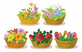 picture of cosmos flowers  - Wattled basket with flowers alstroemeria - JPG