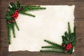 picture of ivy  - Christmas background floral border with holly - JPG
