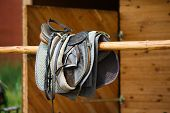 image of girth  - A leather saddles horse in a stable - JPG
