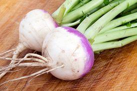 image of turnip greens  - two organic purple top turnip on table - JPG