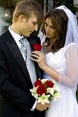 stock photo of wedding couple  - Happy bride and groom on their wedding day - JPG