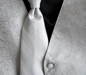 Tux Vest And Tie Bw poster
