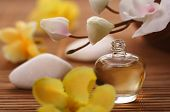 foto of perfume bottles  - bottle of essential oil - JPG