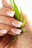 Beautiful hands with French manicure nails