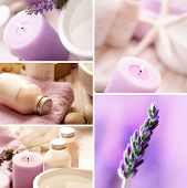 lavender SPA collage